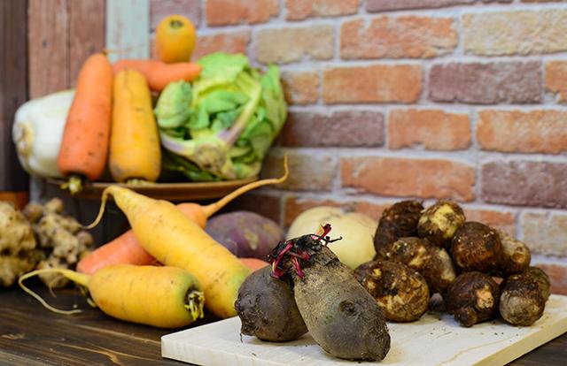 父と妹が同時にガンを患い「食」について考えるようになって自然栽培農業を始めました|計り知れぬ自然栽培の野菜の力とは